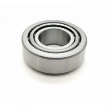 SKF 61801 Ball Bearing   NEW
